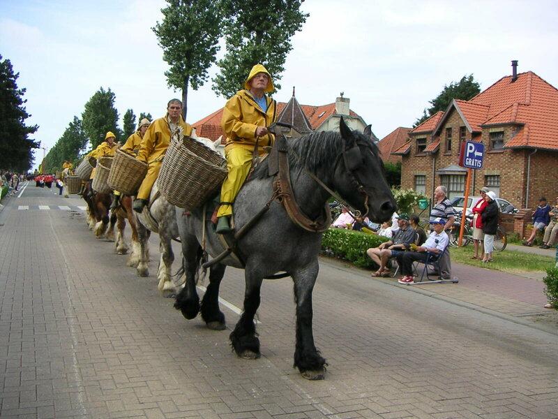 Ловля креветок верхом на лошадях